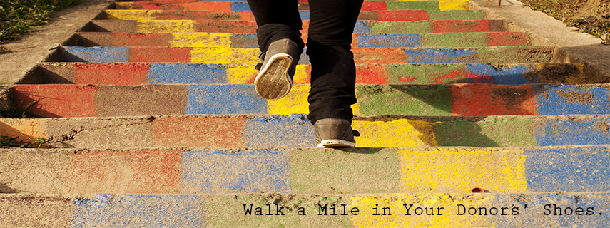 BoardMa-Walk a Mile in a Donors' Shoes
