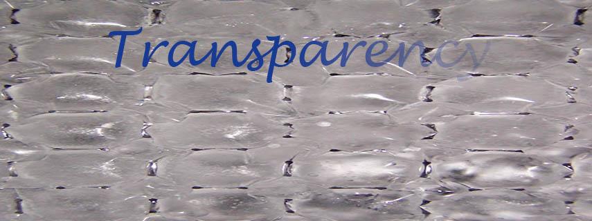 Transparency-BoardMa